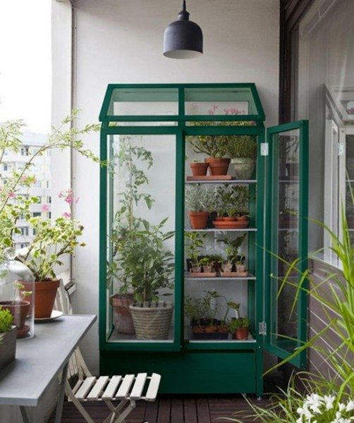 Даже на вашем балконе можно обустроить теплицу.