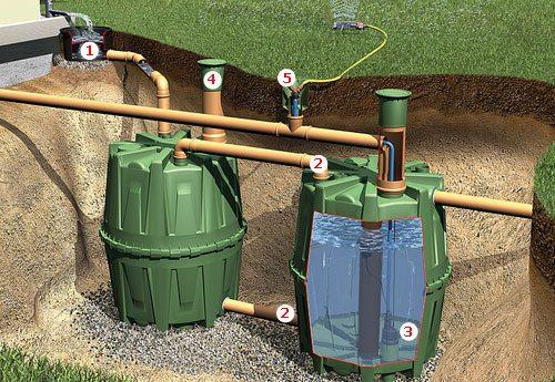 Для полива лучше всего использовать отстоянную воду, запасы которой можно пополнять за счет атмосферных осадков