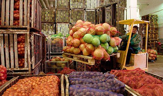 Овощебаза выкупит вашу продукцию быстро, но прибыль будет небольшой