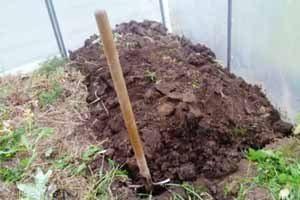 При решении вопроса, как подготовить землю для теплицы, очень важно соблюдать принцип полноты всех выполняемых работ, земля должна быть обработана в полном объёме и на глубину не менее 30 см