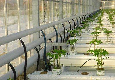 Система подогрева крытого огорода