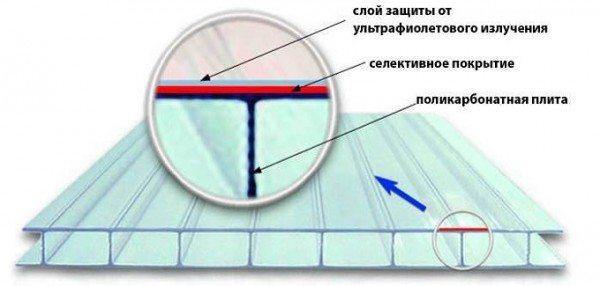 Структура сотового поликарбона
