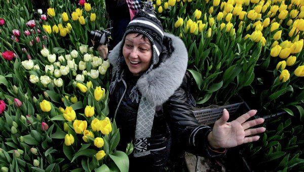 Тюльпаны – лучший подарок на 8 Марта