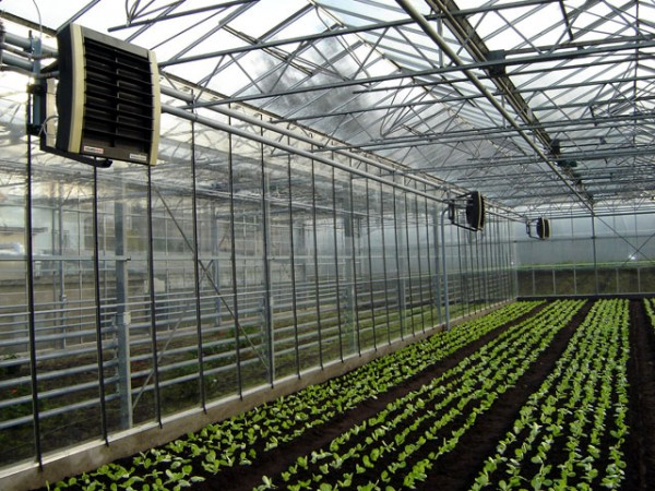 Воздушно-электрические приборы отопления теплицы