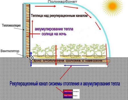 Здесь биологический обогрев комбинируется с эффективным использованием солнечного тепла.