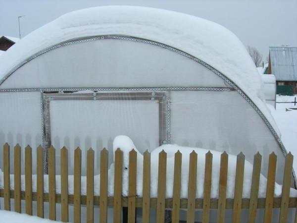 Фото небольшой поликарбонатной теплицы под томаты в Сибири – наилучший вариант, так как обогреть большую площадь очень сложно.