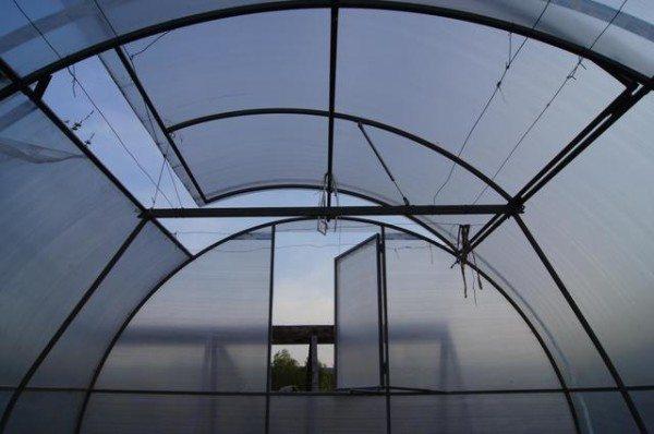 Правильная и своевременная вентиляция - залог хорошего урожая