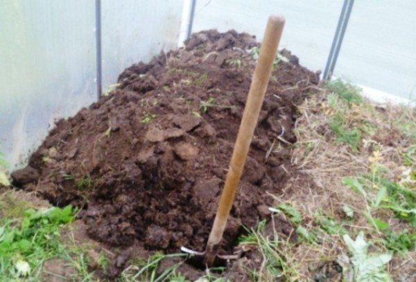 Процесс перекапывания почвы в теплице.