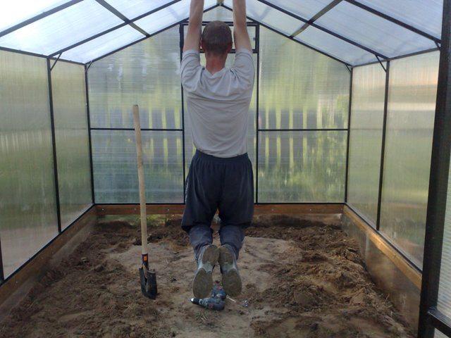 В двускатной теплице можно стоять в полный рост, а на фото – проверка прочности каркаса