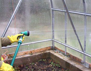 Дезинфекция – залог здорового и обильного урожая, напрочь устранит риск заражения и гибели растений.