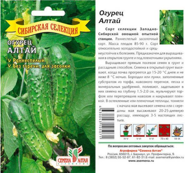 Этот гибрид обогатил сорта огурцов в теплице для Сибири.