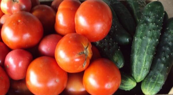 Огурцы и помидоры - хорошо вместе или скучно врозь?