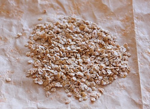 Семена после сортировки