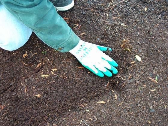 Соответствующая подготовка почвы