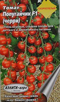 Сорт с обильно разветвляющимися кистями: свыше 20 помидор на каждой из них.