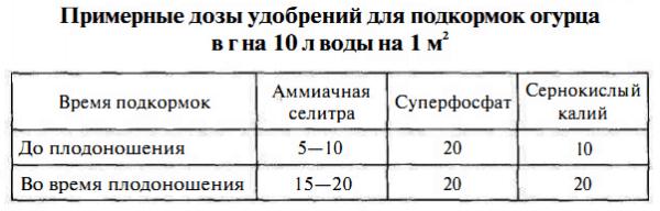 Таблица доз удобрений для подкорма огурцов.