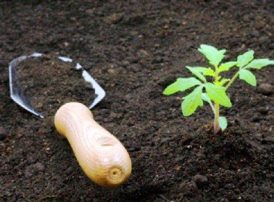 Для каждой культуры нужна особая почвосмесь