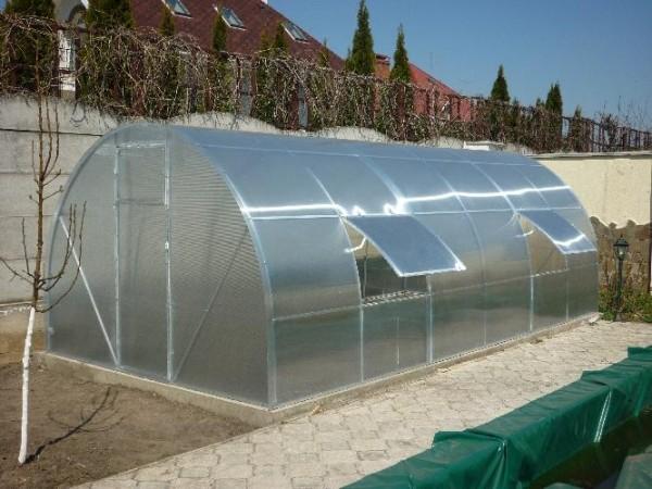 Фото готовой теплицы из поликарбоната с вентиляционными форточками.