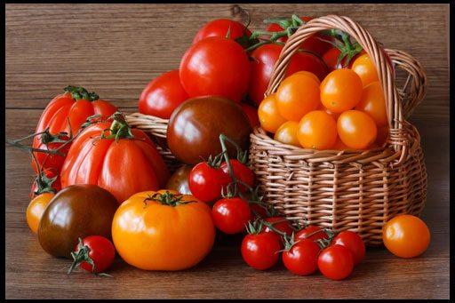 Фото помидоров разных сортов.