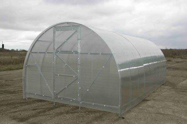 Идеальное укрытие для выращивания помидор