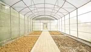 Идеальный порядок в теплице, как на фото – залог и правильно выполненных подготовительных работ и будущего хорошего урожая