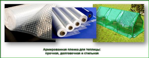 Использование специальной пленки для теплиц может оказаться неплохим рекламных ходом, поскольку данный материал довольно прочен и имеет хороший внешний вид
