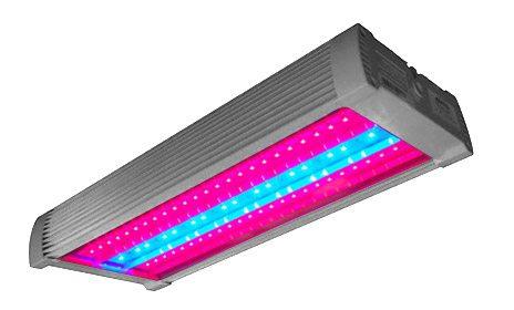 LED-светильник для выращивания растений