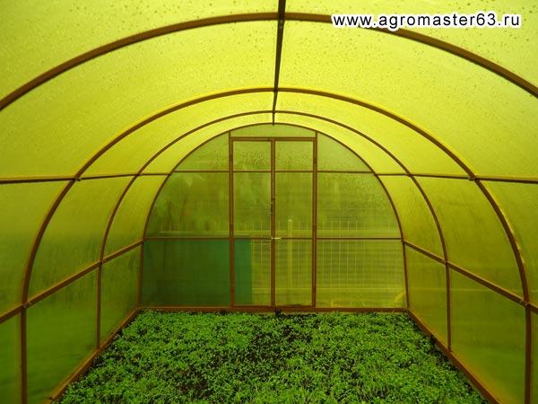 Любительское фото, на котором можно увидеть, что цветной материал не создает правильного освещения для выращивания растений