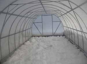Подготовка земли в теплице должна начинаться ещё зимой, когда на дворе лежит снег, им очень полезно и укрыть землю в теплице