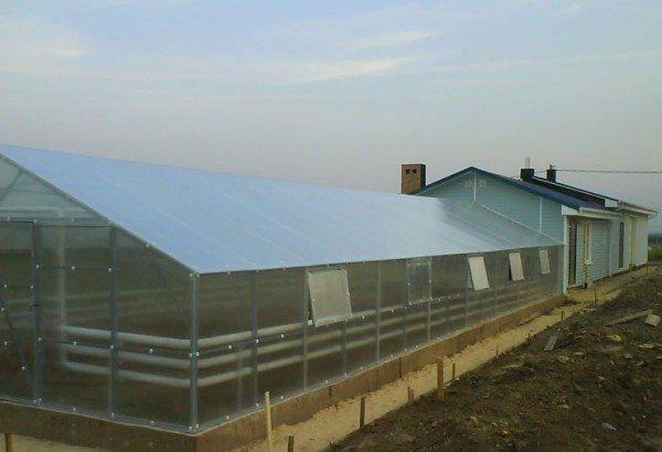 Поликарбонат считается самым практичным и надежным покрытием для конструкций всесезонного использования