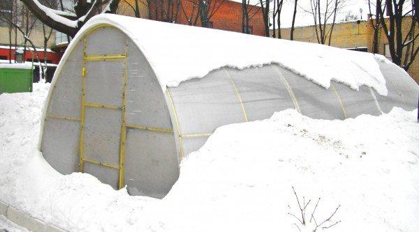 Поликарбонат толщиной более 8 мм позволяет эксплуатировать теплицу даже зимой
