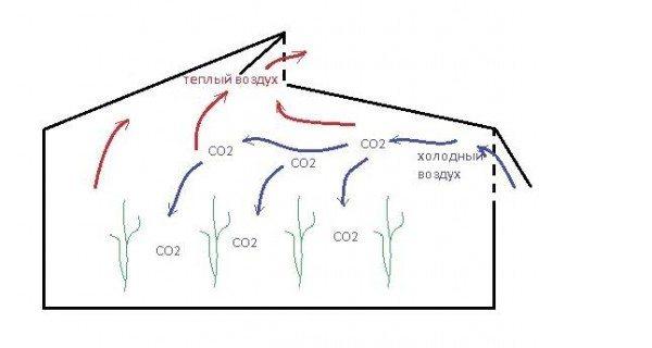 Принцип организации естественной вентиляции для теплицы