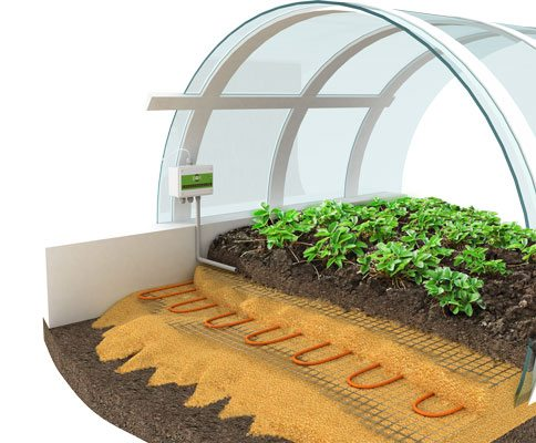Принцип организации и монтажа обогревательных систем для почвы в теплице