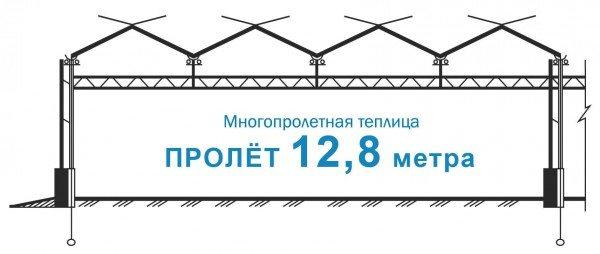 Рисунок промышленного парника с пролетом 12.8 м