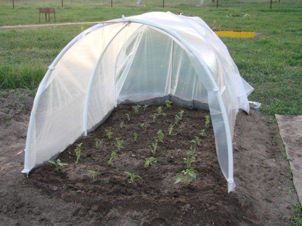 Самодельный крытый огород