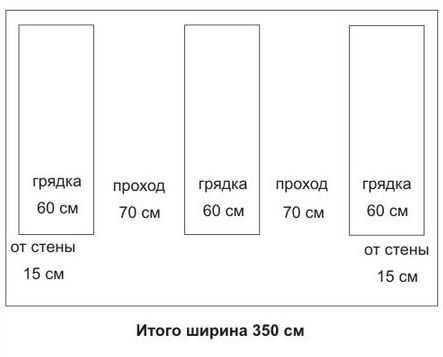 Схема расположения грядок для теплицы с оптимальной шириной.