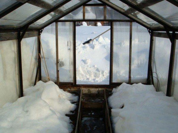 Снег в теплице принесет новые питательные вещества