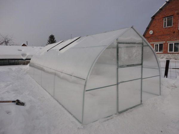 Снег внутри парника зимой