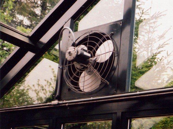 Специальный вентилятор для теплицы должен обладать заслонкой