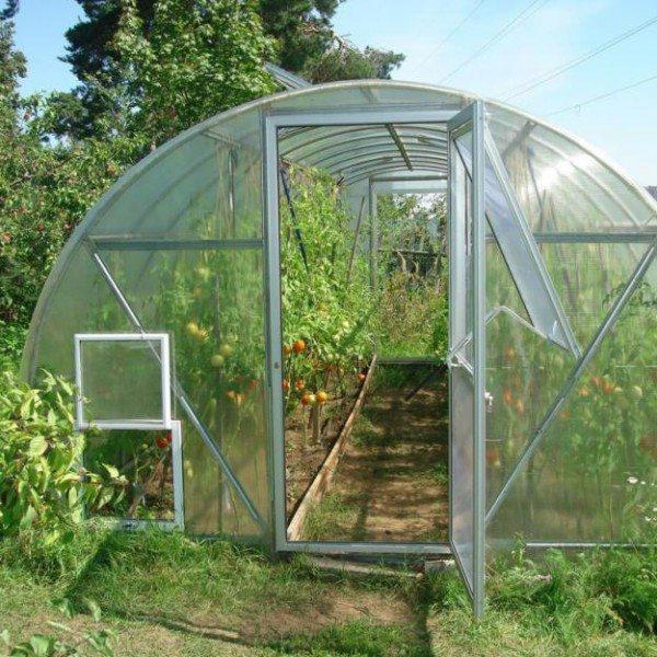 Технология выращивания овощей в теплицах обязательно предусматривает регулярное её проветривание, особенно в знойные летние дни
