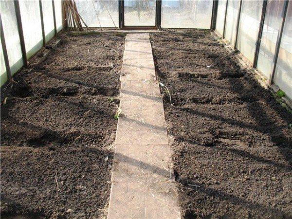 У грядок нет бортов – самая распространенная ошибка садоводов