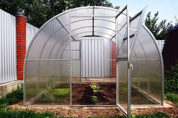 Зимний огород в домашних условиях