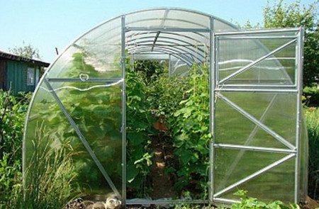 Фото бытовой теплицы для выращивания овощей