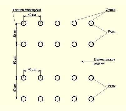 На фото – примерная схема посадки.