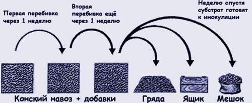 Пошаговый процесс подготовки компоста.