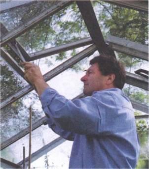 Проветривание осуществляется путем снятия пленки или открывания фрамуг, расположенных не крыше и фронтонах теплицы