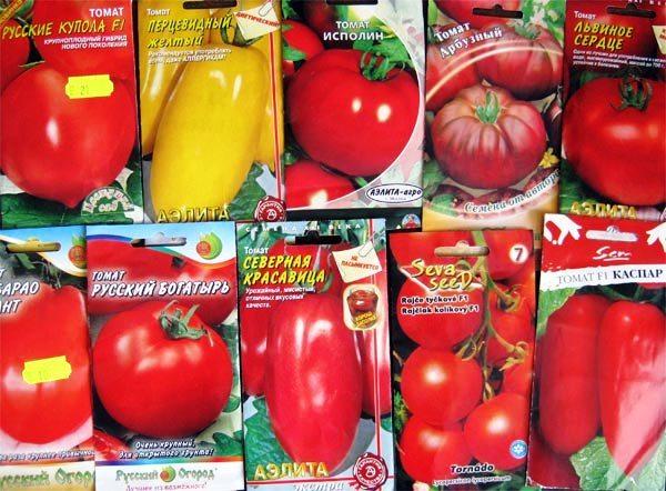 Сорта помидоров.