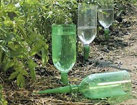 Вариант устройства внутрипочвенного полива с использованием пластиковых бутылок