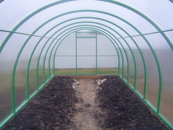 Для обеспечения хороших условий растениям необходима очень тщательная подготовка почвы для теплицы.