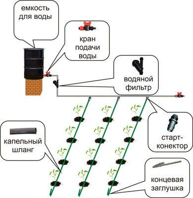 Фото схемы капельной системы.